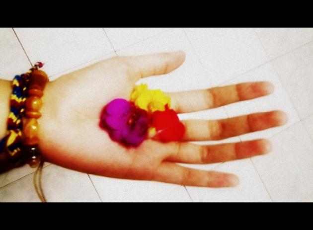 Hoa đỏ, hoa vàng và hoa tím